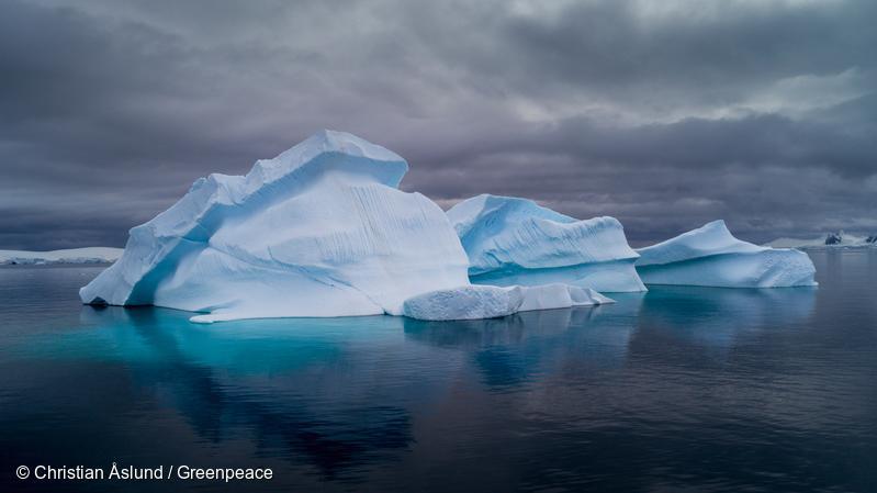 绿和发现:南极正被微塑料和有毒有害化学品污染