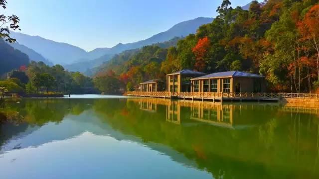 惠州这个小镇,风景叫板九寨!去一次就念念不忘!
