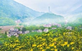 广西河池凤山全力推进旅游扶贫产业发展
