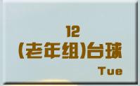 12老年组台球