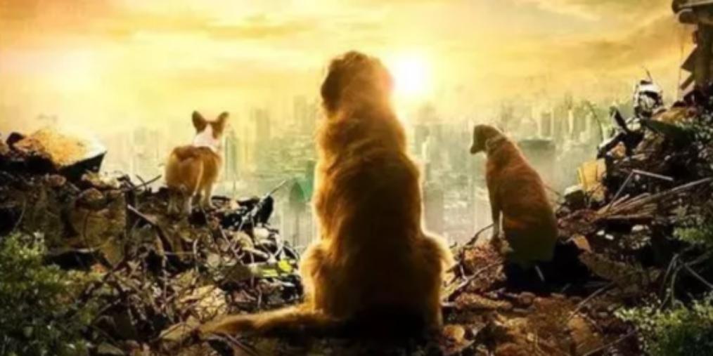 中泰联手打造《忠犬流浪记》 什邡取景
