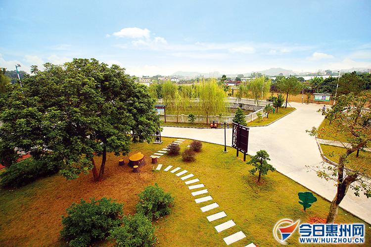 惠州扎实开展新一轮绿化大行动 森林小镇怡人