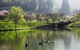 端午节遇上父亲节 福州发布小长假旅游惠民出行指南
