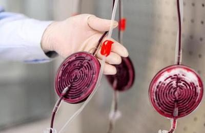 世界献血者日:一袋合格血的成长历程