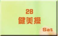 28健美操
