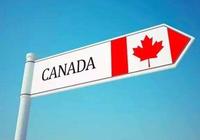 分数线影响申请吗?加拿大正考虑提升申请系统