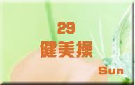29健美操