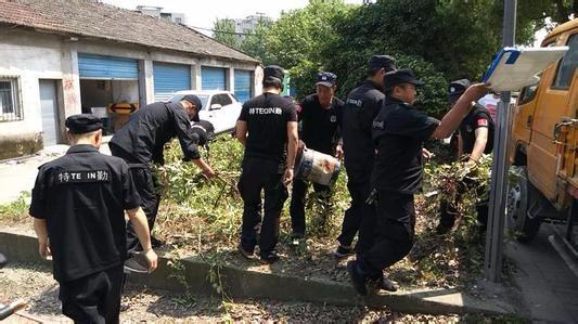"""桂林六区一县统一行动 集中整治环境卫生""""五乱"""""""