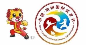 第十届中国·沧州国际武术节精英