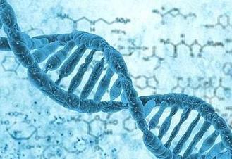 美军想用DNA存储数据 数据大并快速读取