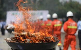灵山版虎门销烟 一大批毒品在大火中化为灰烬