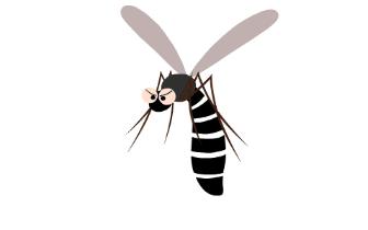 确认过眼神 你是蚊子喜欢的那类人
