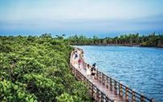 公布|海南公布第一批省级重要湿地名录 7处湿地上榜
