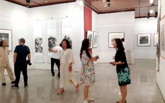 新唐山 新水墨2+N美术作品展在丰南区文化馆开幕