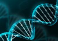 美警方用商业基因库抓罪犯 你的DNA信息被滥用了