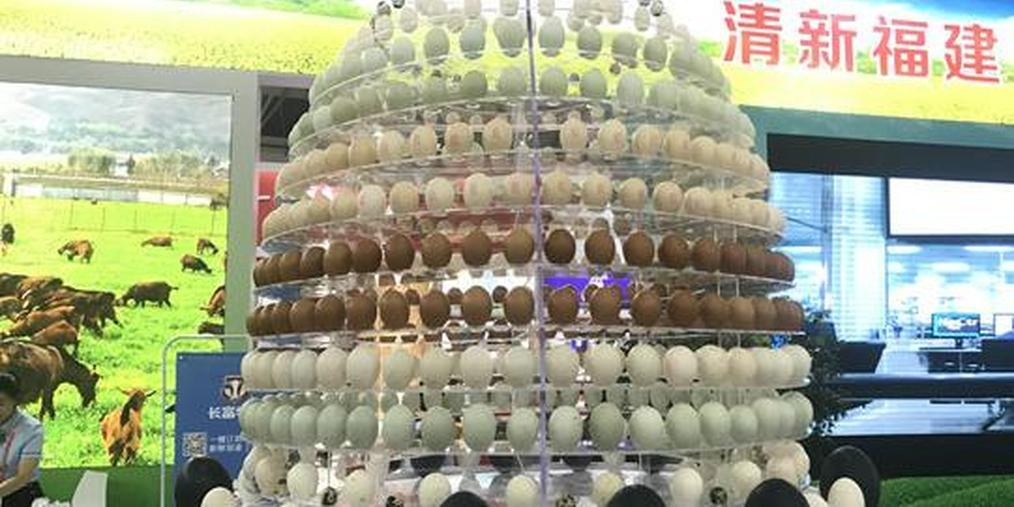 鸡蛋、鸭蛋、鸵鸟蛋……58种蛋类 主播傻傻分不清