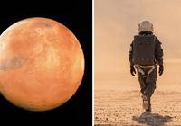 """火星缺氧问题有解决方案了 蓝藻细菌能变""""制氧机"""