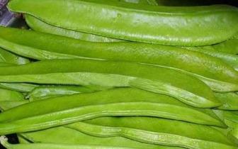 农村这些野菜可祛除黑色素美白补水抗衰老!