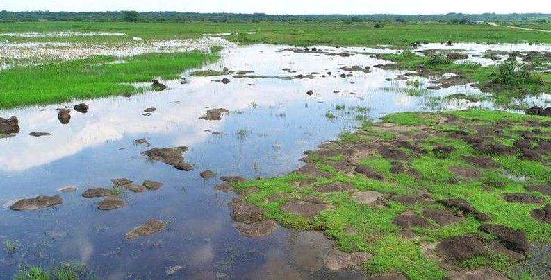 航拍潭丰洋湿地 尽显火山湿地交融魅力