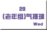29老年组气排球