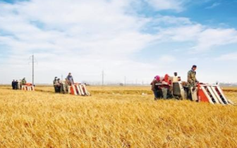 """今年9月23日我们将迎来第一个""""中国农民丰收节"""""""