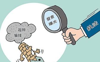 南昌县县长陈翔实地调度中央环保督察问题整改工作