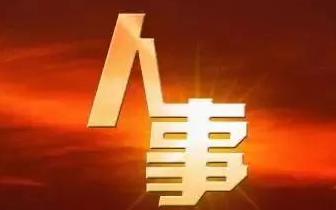 人事   新任省委常委、 副省长刘强分工确定