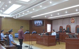 冕宁县法院公开审理一滥伐林木案