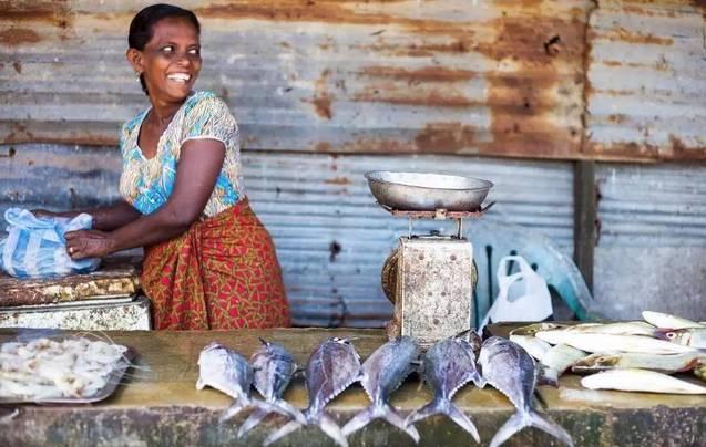 微笑之国:被遗忘的印度洋文化明珠