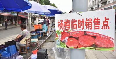为了方便杨梅售卖,江北做了件暖心事!