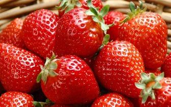 草莓遇到它才是绝配 几分钟吃一盘 美白肌肤