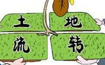 广西出台20条措施优化土地要素供给为企业减负
