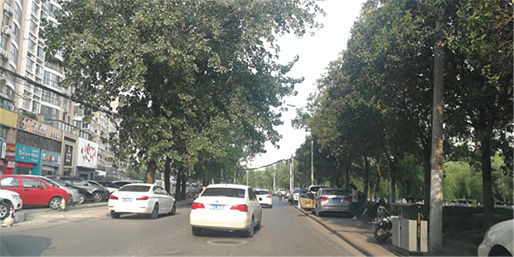 郑州 郑州这条路为啥修了一段留了一段?