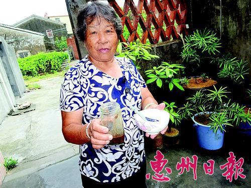 惠东红树林里螃蟹多 美味蟹酱极受游客青睐