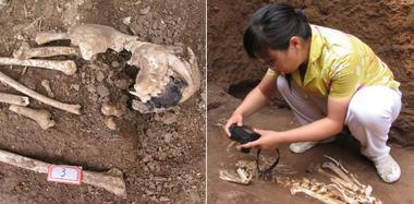 秦始皇祖母陪葬墓发现长臂猿遗骸