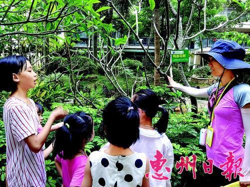 惠城举办环保自然学堂活动 小区花园里感受自然之美