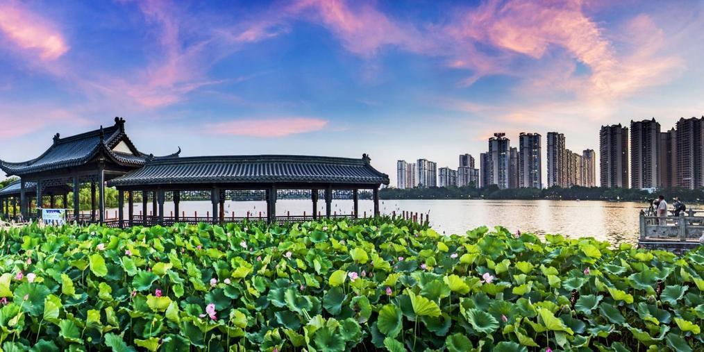 2018年贵港市第32届全国荷花展览开幕式