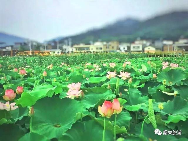 初夏一定要到韶关这些地方完美避开人潮!