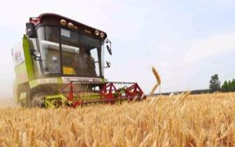 秸秆还田率达到95% 唐山167万亩小麦机收圆满结束