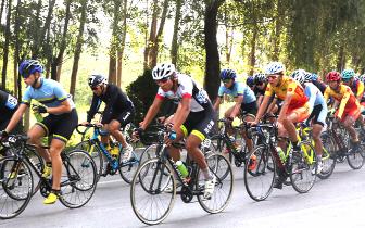 """""""这是飞翔的感觉""""省运会公路自行车赛给你"""