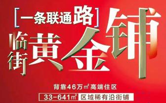 鸿泰花漾城建面33-641㎡沿联通路纯外街旺铺正热销!