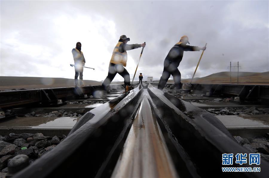6月30日,在青藏铁路唐古拉站附近,养路工人冒着大雨对路轨进行捣固作业。新华社记者侯德强摄