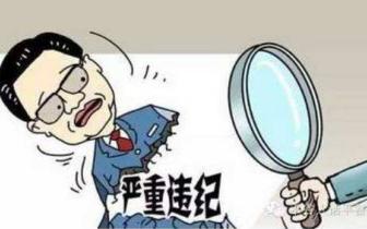 潜江市高石碑派出所崔志芳接受纪律审查和监察调查