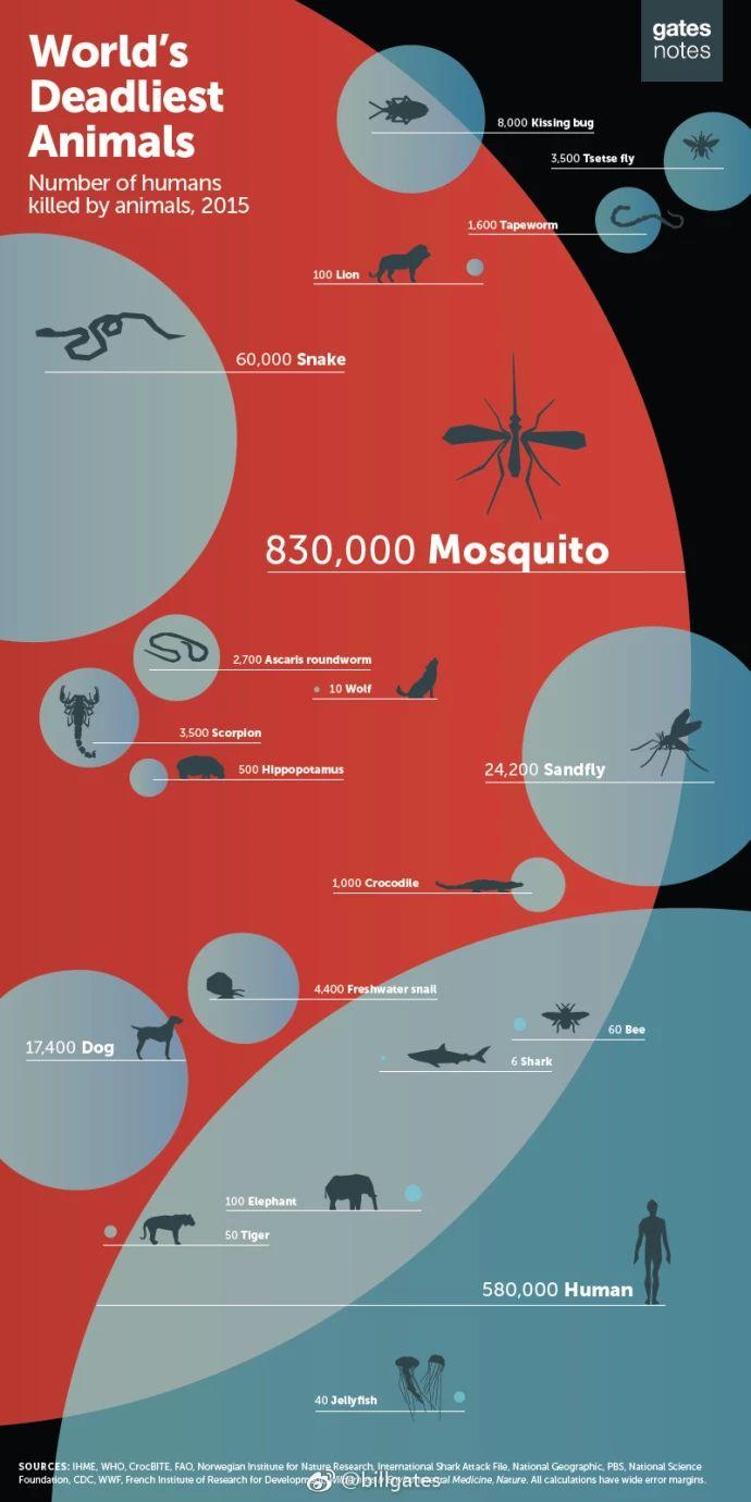 一年夺走83万人生命,比尔盖茨:它比任何动物都可怕