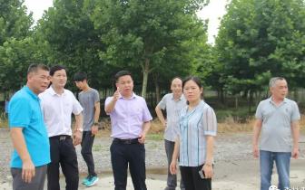 潜江市委副书记舒敏调研国有林场改革发展情况