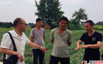 潜江探索潜半夏种植产业扶贫模式 助力脱贫道路