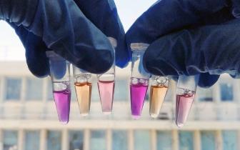 """海底发现""""噬光蛋白质"""" 帮助微生物将光线转为能量"""