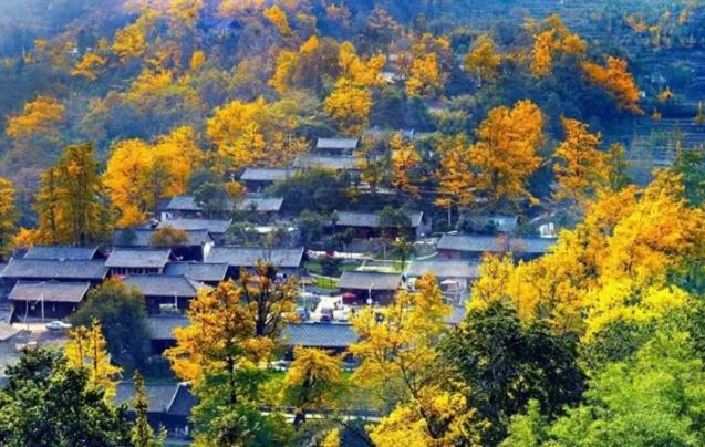 """贵州这么多""""特色乡""""快来看看你的家乡有啥"""