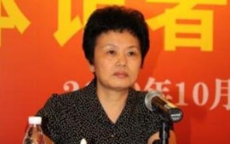 广东|梅州原正厅级干部林碧红被判11年6个月 财物上缴国库