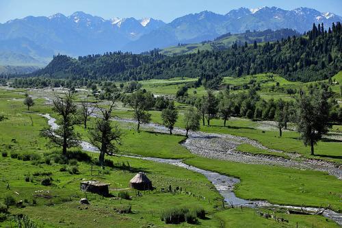 伊犁河谷持续高温 居民需注意防暑降温